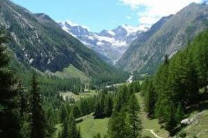 Gran-Paradiso-da-Valnontey-di-di-Marcello-Marocchi-300x224.jpg