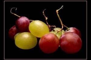 vini-frutta-di-Francesco-Raciti